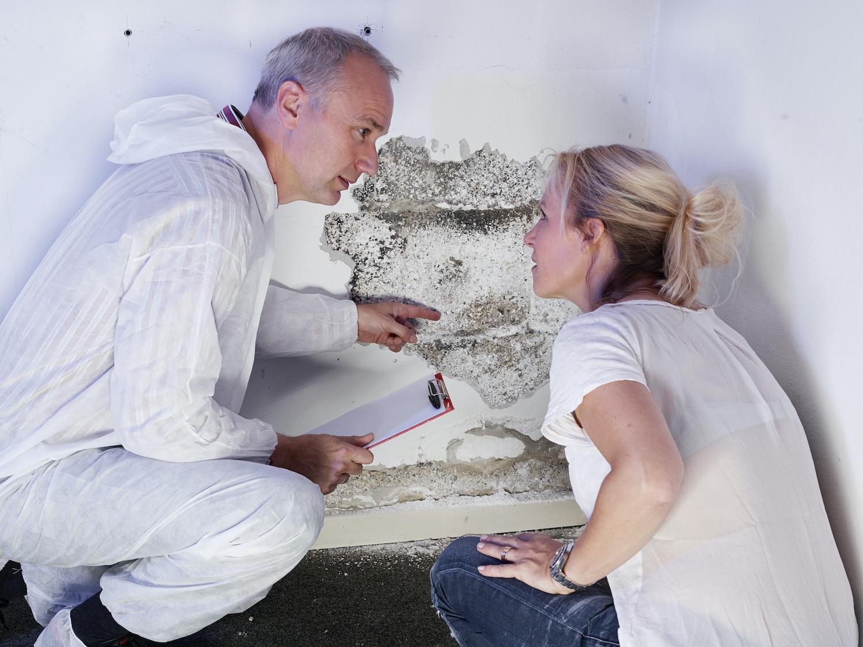 Mold & Mold Remediation Insurance Claim Orlando FL